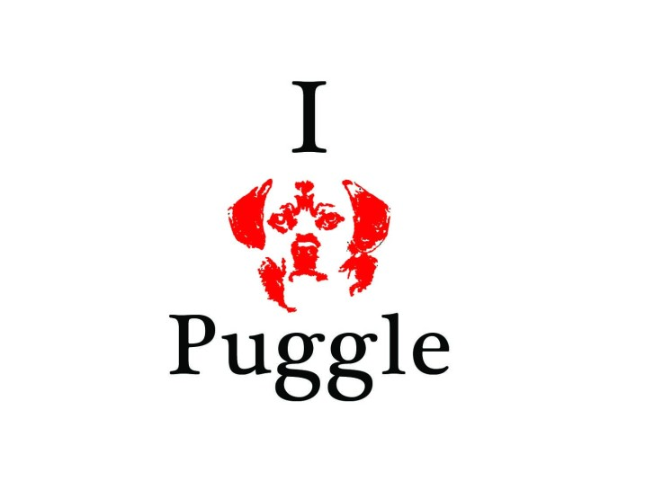 I love puggle